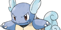 Wartortle Gameking Inc.