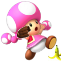 File:ToadetteMS3DS.png