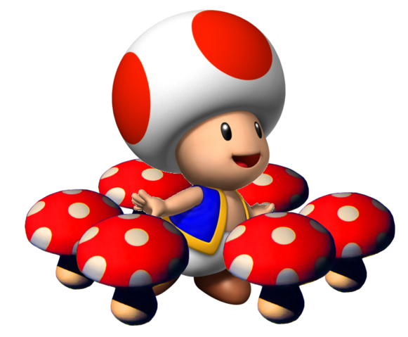 File:SM64DS Toad.png