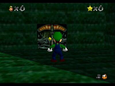 Luigi's Mansion 7
