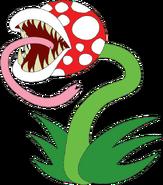 Plargha Plant