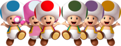 Toads.png