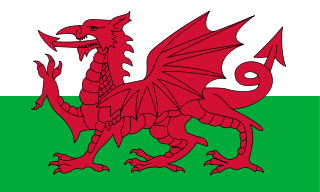 File:Welsh Flag.png