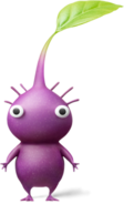 Purple-pikmin
