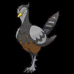 521Unfezant-Female