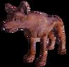 Alpha Coyote
