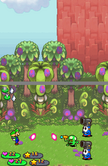 Shroobs Jungle