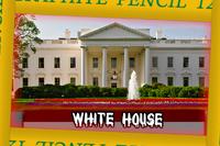 MASSES Arena White House