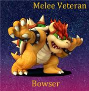 SSBC Roster Bowser