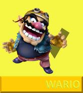 WarioSSBGX
