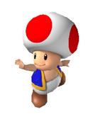 Toad NSM64
