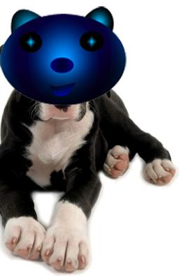 File:Dog Unten.png