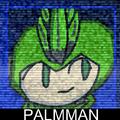 FSB PalmMan