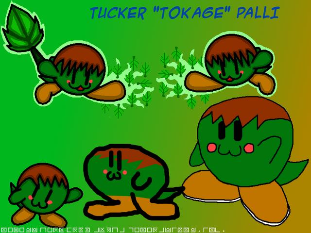 File:TuckerPalliBIG.png