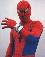 Japanesespiderman