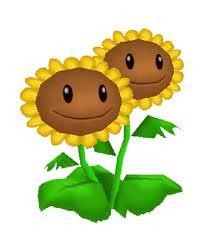 File:Twin sunflower.jpg
