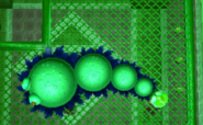 3 - Moldorm (LBW)