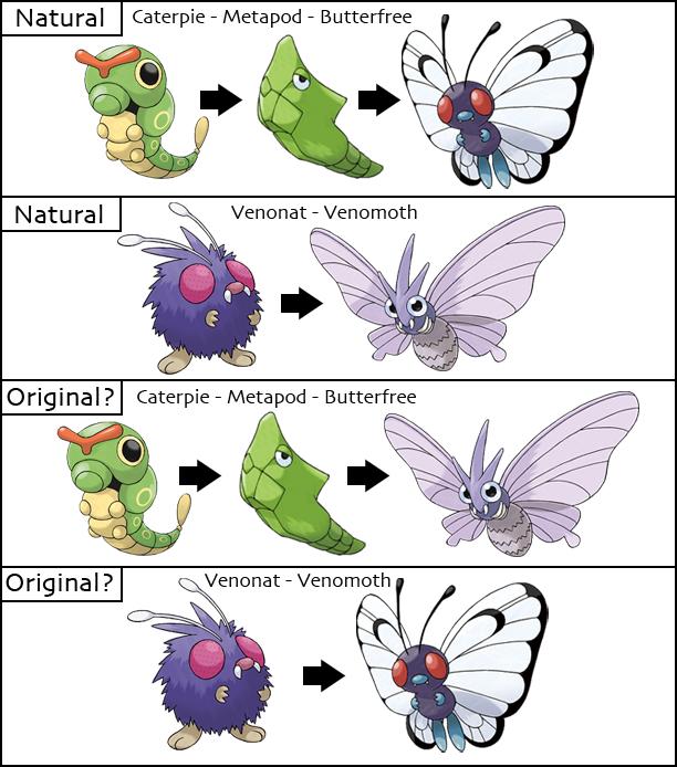 Pokemon Evolution Theories | FanTheories Wiki | FANDOM ...