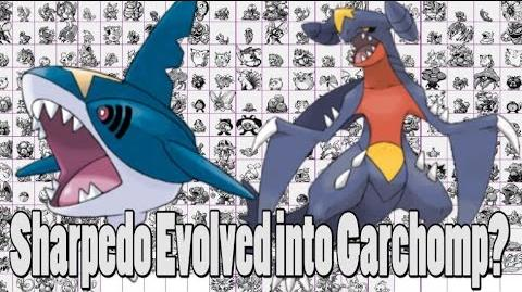 Pokemon Theory Garchomp Evolved From Sharpedo?