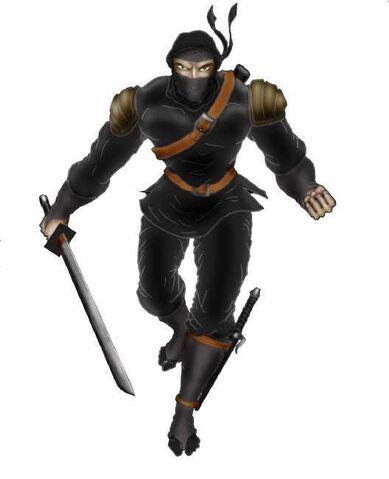File:Ninja3.jpg