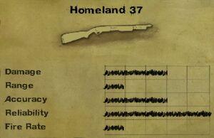 Homeland 37