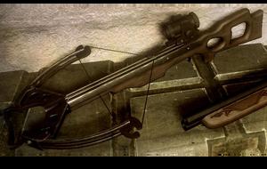 Far Cry 2-Crossbow