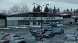 Phoenixfarms