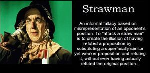 203 strawman