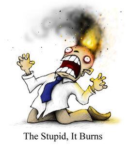 86 the stupid it burns