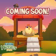 Chicken Coop coming soon