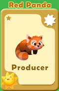 Producer Red Panda A