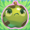 Apple grumpy on grass
