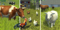 Animals (Farming Simulator 2013)