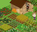 Farm town Wiki