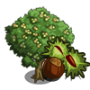 Chestnut Tree-icon