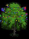 Indian Laurel Tree5-icon