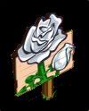 White Roses Mastery Sign-icon