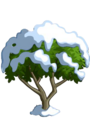 Apricot Tree7-icon.png