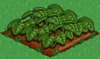 Strawberry 66.png