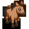 JF Mongolian Foal-icon