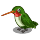 HummingBird-icon