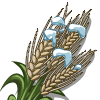 Winter Grain-icon
