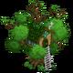 St. Patrick's Tree House 3-icon