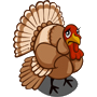 Found Wild Turkey.png