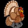 Found Wild Turkey