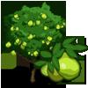 Guava Tree-icon