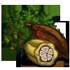 Giant Cocoa Tree-icon