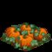 Super Pumpkins 100
