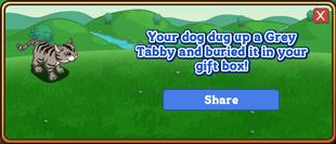 Grey Tabby Dogtreat Reward