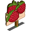Raspberry Mastery Sign-icon